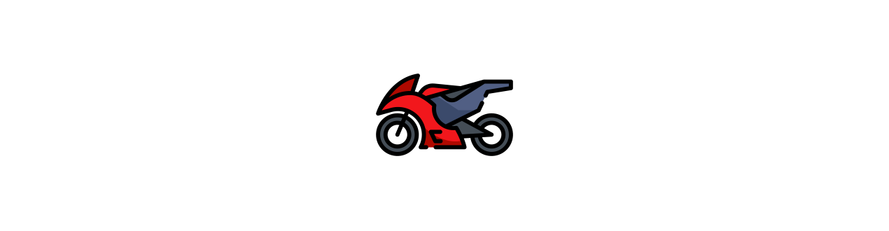 Electric child motorcycle for 12 volts
